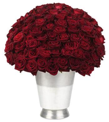100 Black Baccara Roses