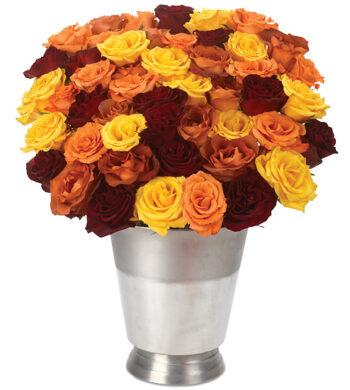 50 Autumn Roses