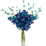 Stunning Sapphire Orchids with signature glass vase