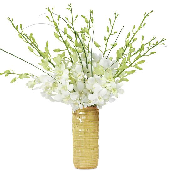 Autumn Elegance Orchid Bouquet
