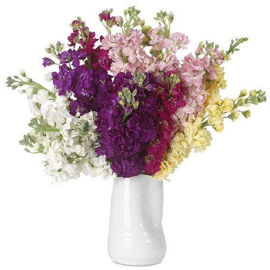 Colorblock Stock Bouquet