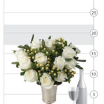 Timeless White Roses shown to scale