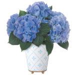 Botanique Blue Hydrangea Plant with cachepot