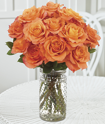 Ultimate Year of Roses