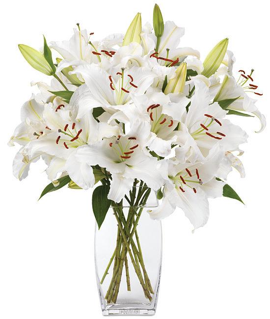 Jan - Opus One Lilies