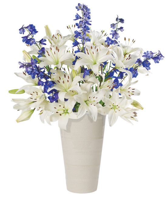 Jul - White Clouds & Blue Skies Bouquet