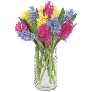 Fragrant Hyacinth Bouquet