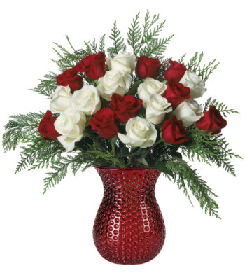Red and White Luxury Holiday Roses