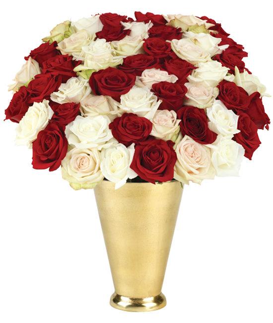 50 Luxury Holiday Roses