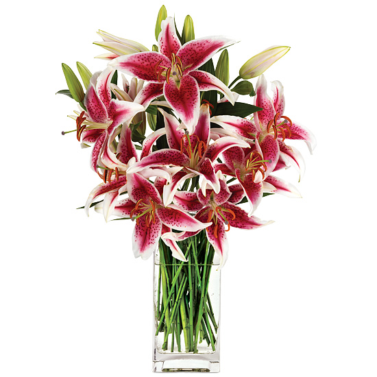 Palm Beach Lilies with signature glass vase