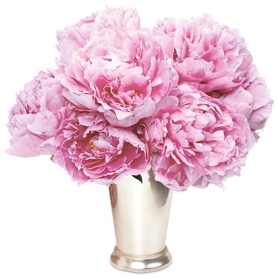 Powder Pink Peony Bouquet