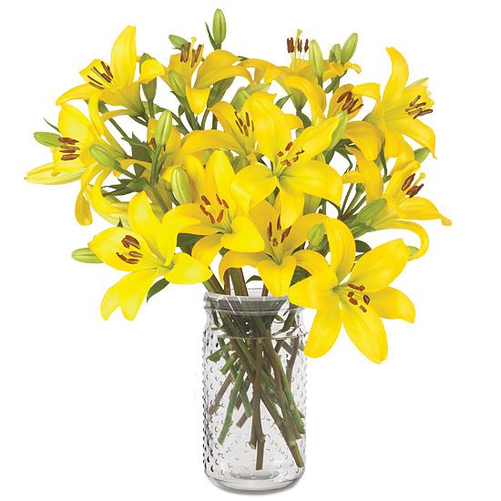 Sep - Oriental Lily