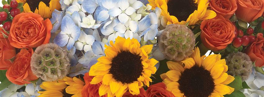 Fresh Bouquets
