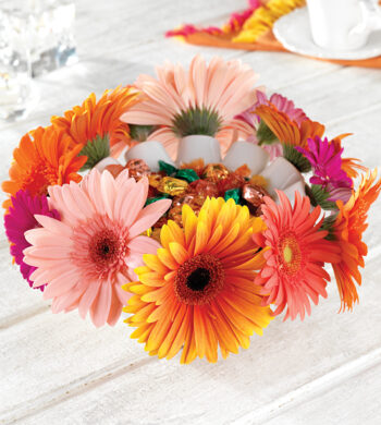 Celebration Gerbera Daisy Centerpiece