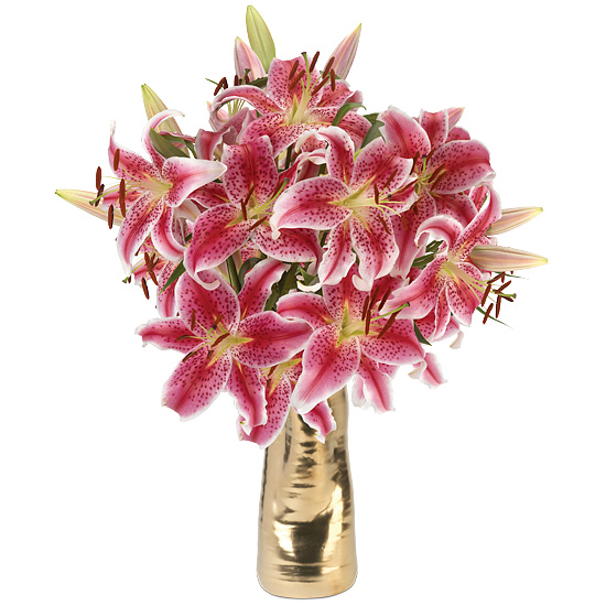 Palm Beach Lilies with vase