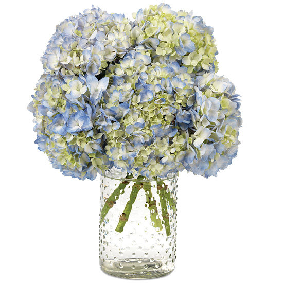 SoHo Hydrangea with signature glass vase