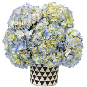 SoHo Hydrangea with vase