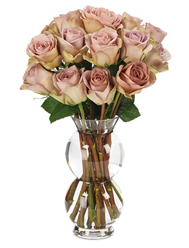 A new rose variety with subtle tones of lavender, gray & green.