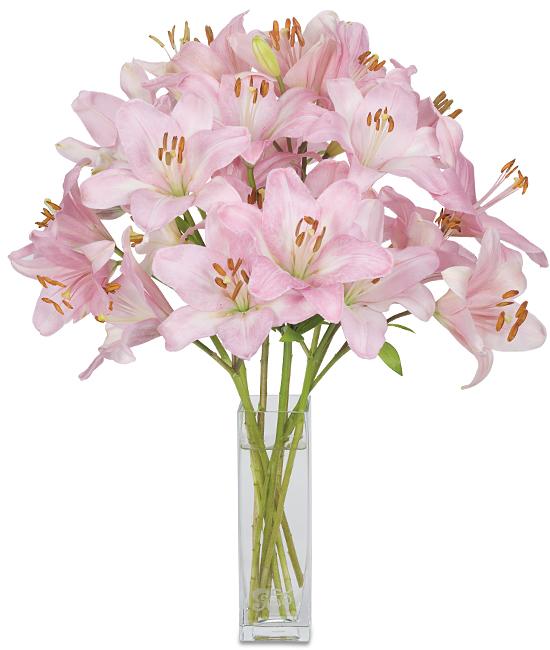 Apr - Chianti Lilies