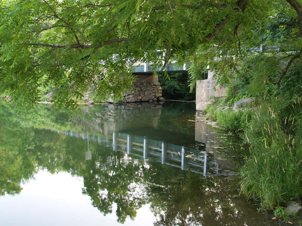 Reflections: The pond & the bridge