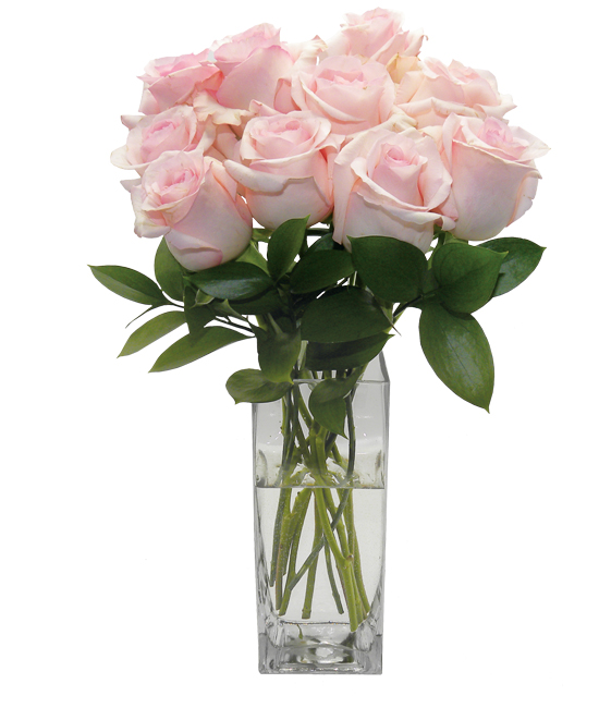 Feb - Nena Rose