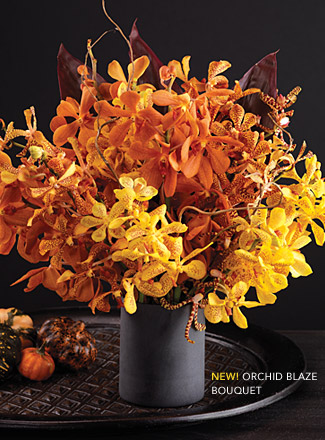 Orchid Blaze Bouquet