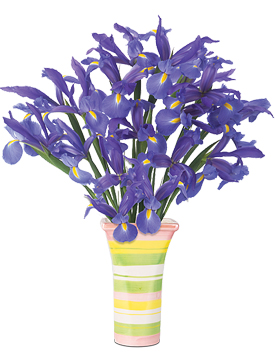 Spring Iris Bouquet & Vase for only $49.95