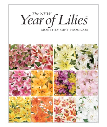 The Year of Lilies