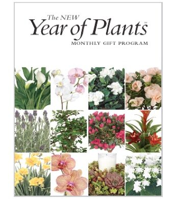 The Year of Plants
