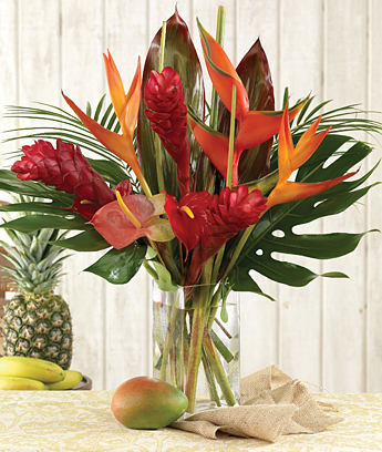 Year of Tropicals