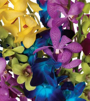 New Year's Floral Arrangements