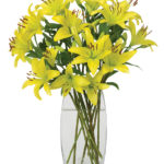 Oct - Queen of the Night Lilies