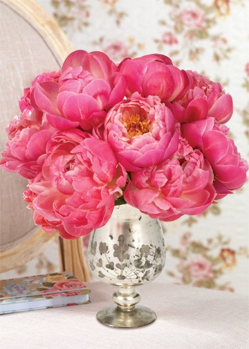 With Love Peonies