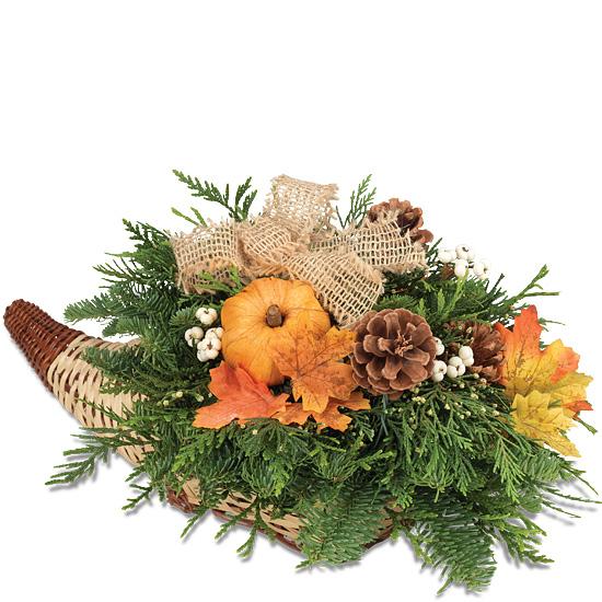 Seasonal Cornucopia $49.95