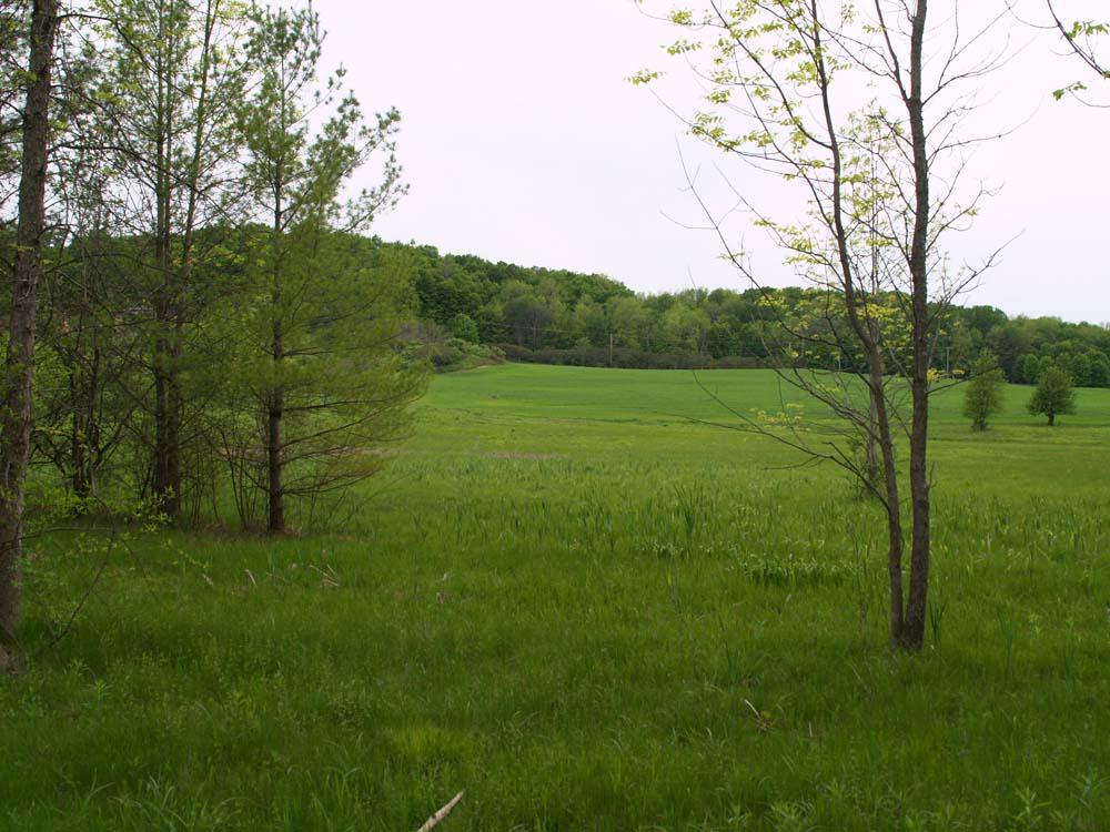 Shelburne Bay Park Vermont