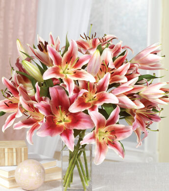 ultimate-year-lilies-exp