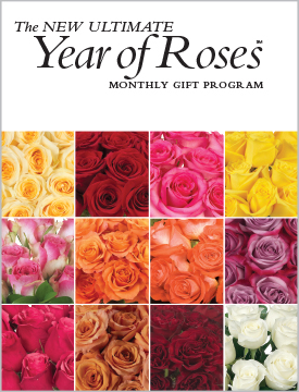 The Ultimate Year of Roses