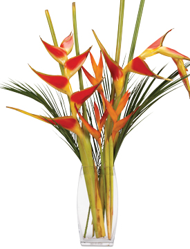 Aug - Heliconia Bouquet