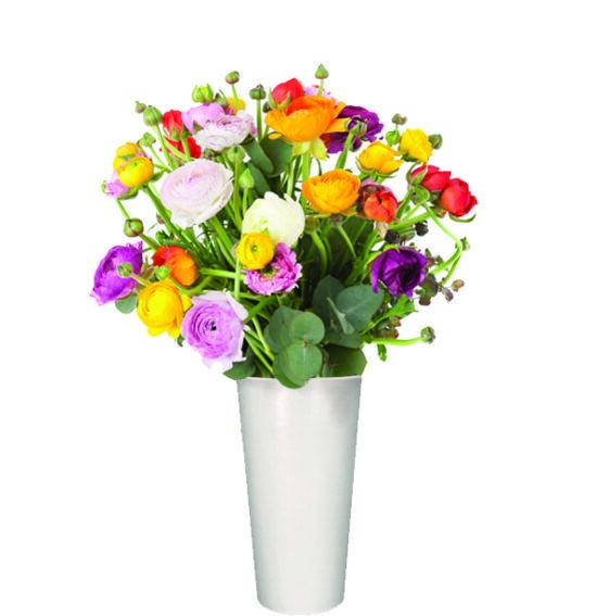 APR - Mixed Ranunculus