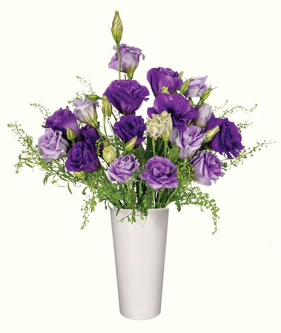 NOV - Purple Lisianthus & foliage