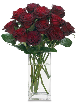 Nov - Rose Red Sauvignon Roses