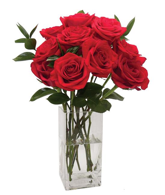Jul - Forever Rose